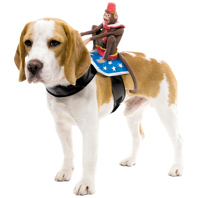 Dog Riders Monkey Costume  sc 1 st  Laughing Squid & Humorous Dog Costumes That Look Like Things are Riding on Its Back