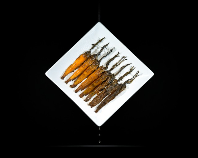 One Third, photo series of rotting food by Klaus Pichler