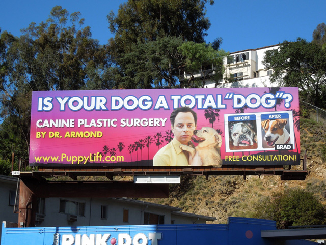 Canine Plastic Surgery