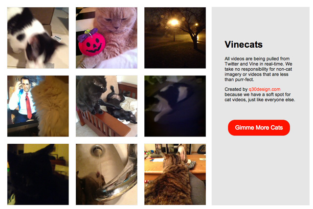 Vinecats