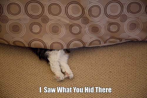 I Saw What You Hid There
