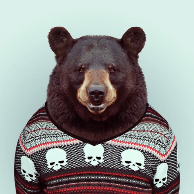 Zoo Animal Fashion Portraits by Yago Partal