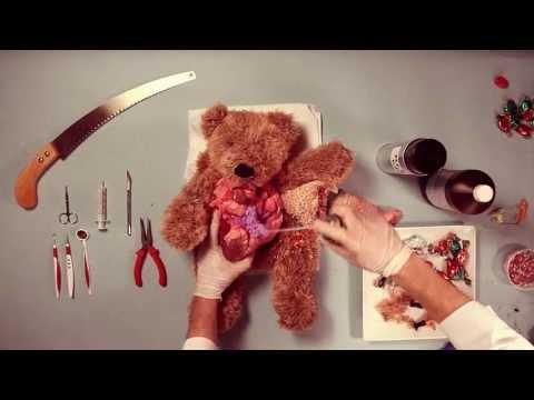 A Stuffed Bear Goes Through Surgery in Ze Frank's Bizarre 'Teddy Has An Operation'