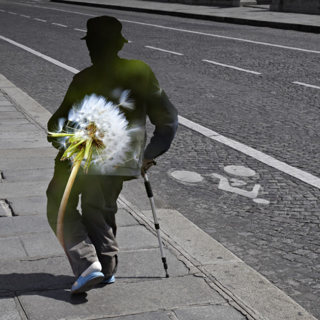 Pedestrian photomontages by Nacho Ormaechea