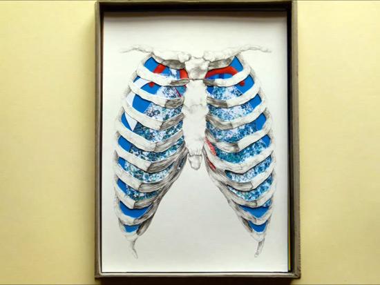 Anatomy Box by Valentina Formisano