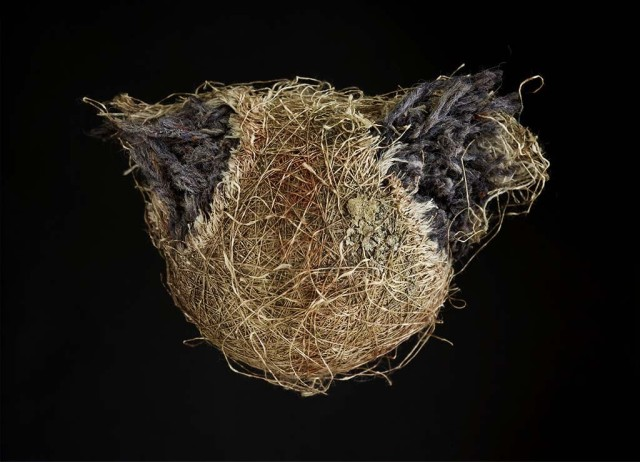 Decaying baseballs by Don Hamerman