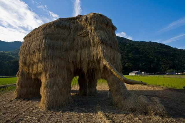 Fallen straw mammoth at Setouchi 2010
