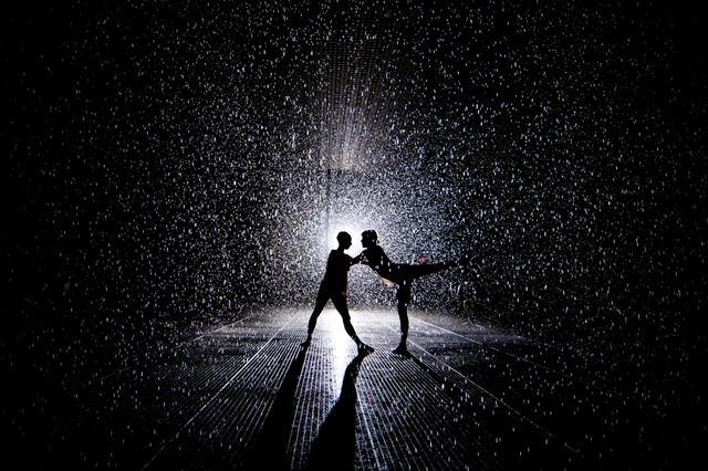 Rain Room by Random International at MoMA