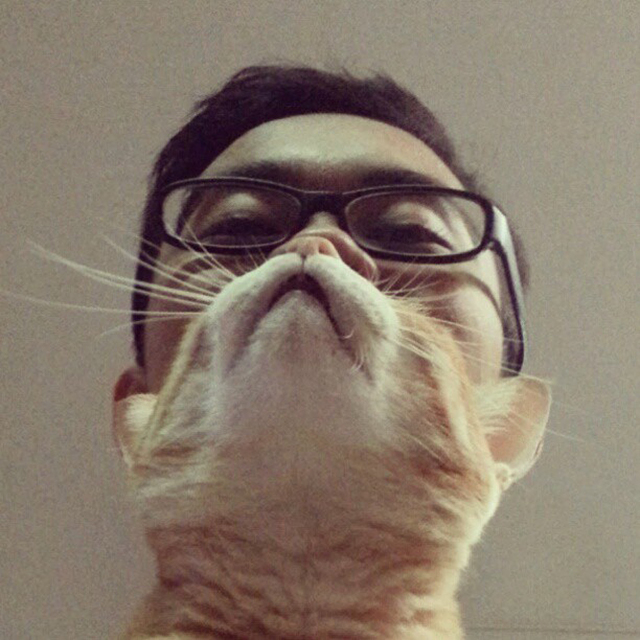 Cat Beard by Zulfadli Isa