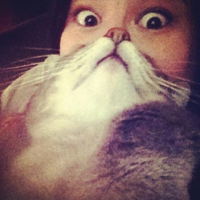 Cat Beard by Briana Nguyen