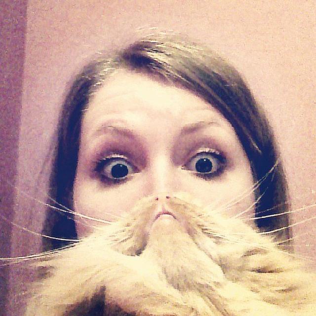 Cat Beard by Julia Budaeva