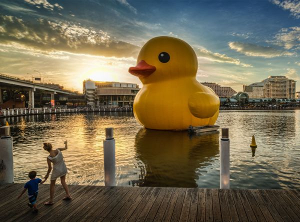 Florentijn Hofman's Giant Inflatable 'Rubber Duck' Floats to Hong Kong