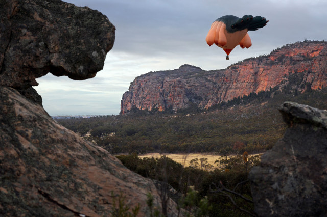 The Skywhale by Patricia Piccinini
