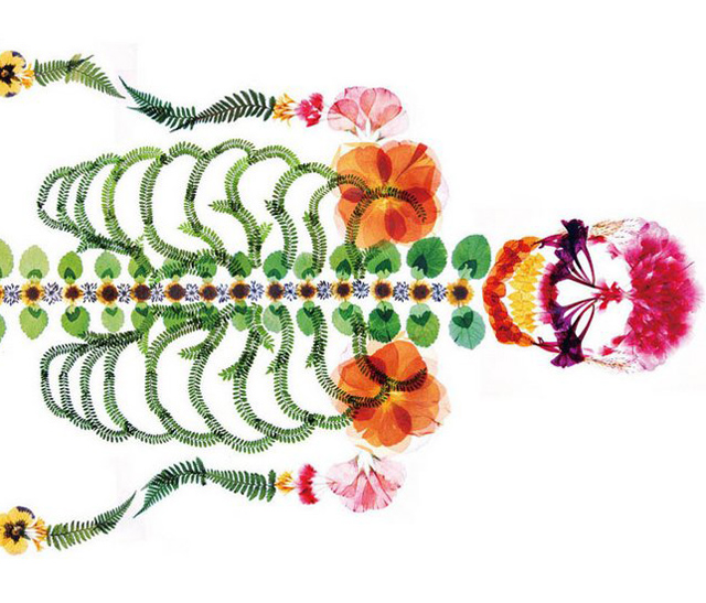Flower skeleton