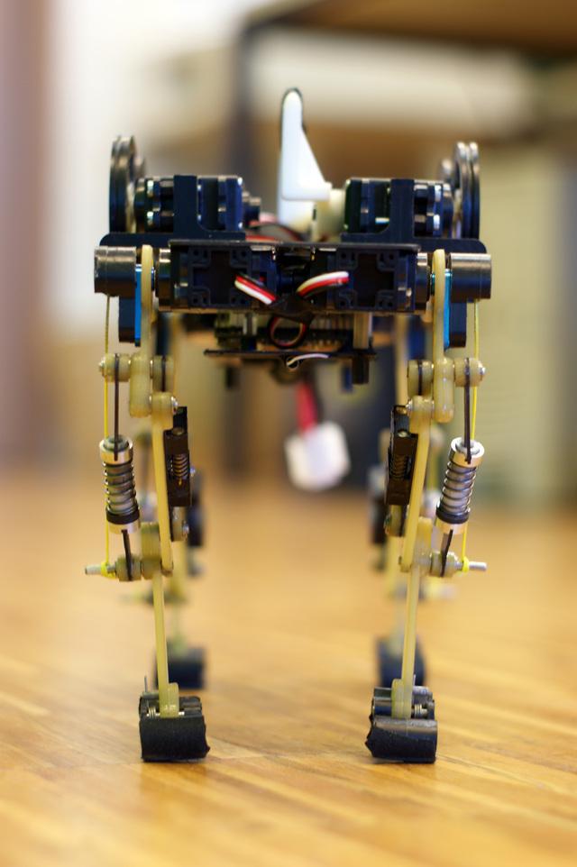 Cheetah-Cub Robot