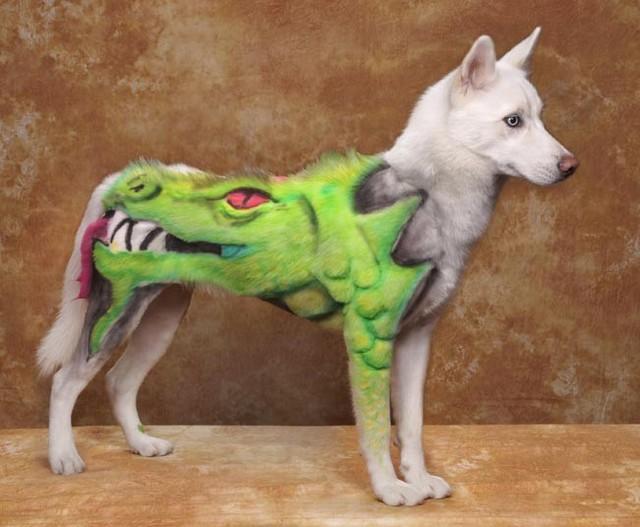 Creative Dog Grooming