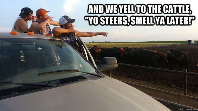 A Fresh Breath of Farm Air