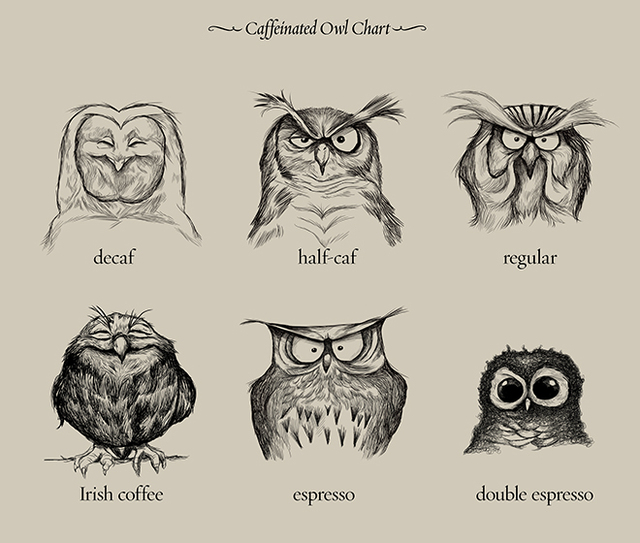 Caffeinated Owls A Chart Ilrating Diffe Types Of Coffee With Cute