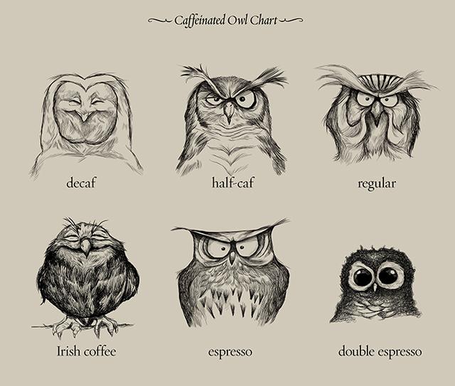 Afbeeldingsresultaat voor Owl coffee chart