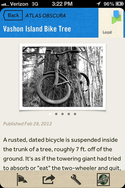Vashon Island Bicycle Tree