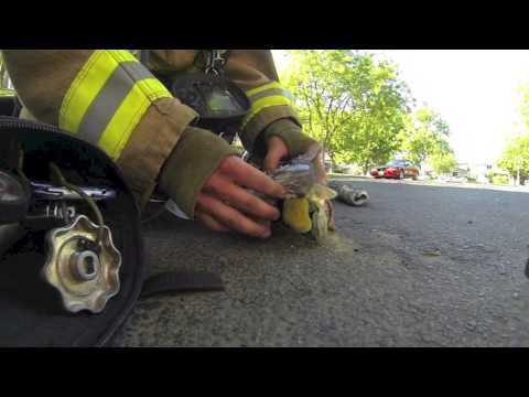 Kitten Revived By Firefighter Who Captured the Entire Rescue On His Helmet Cam