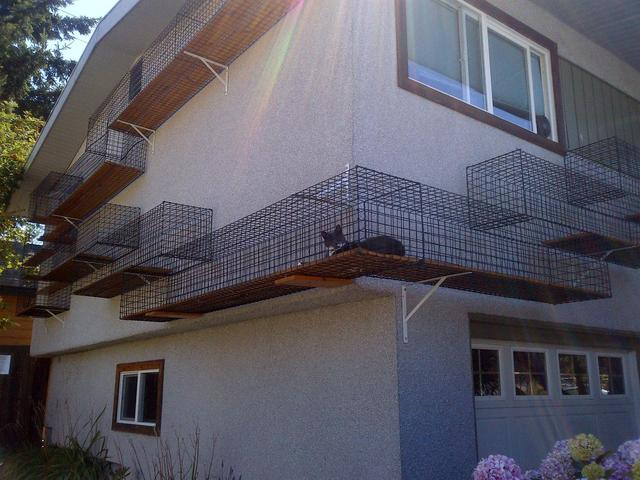 Fenced-In Outdoor Catwalk That Wraps Around the Outside of a Home