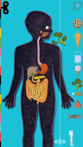The Human Body, An Educational App for Exploring a Working Model of ...
