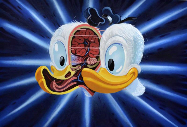 Cross Section of Donald's Head