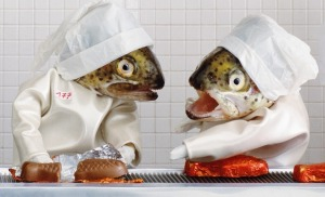 Fish art by Anne-Catherine Becker-Echivard