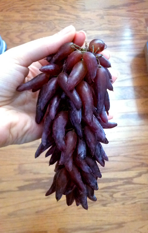 Freaky Grapes