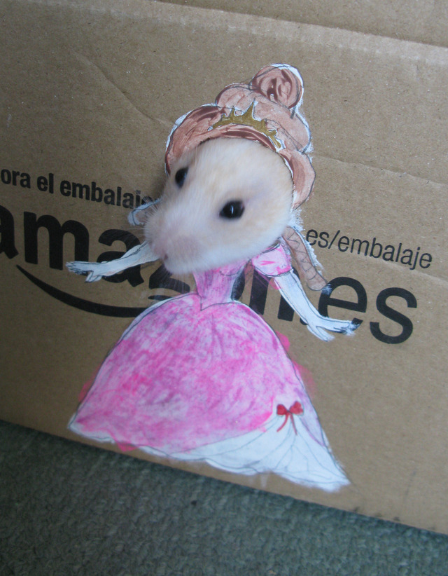 David Bowie The Hamster Plays Dress Up With Colorful