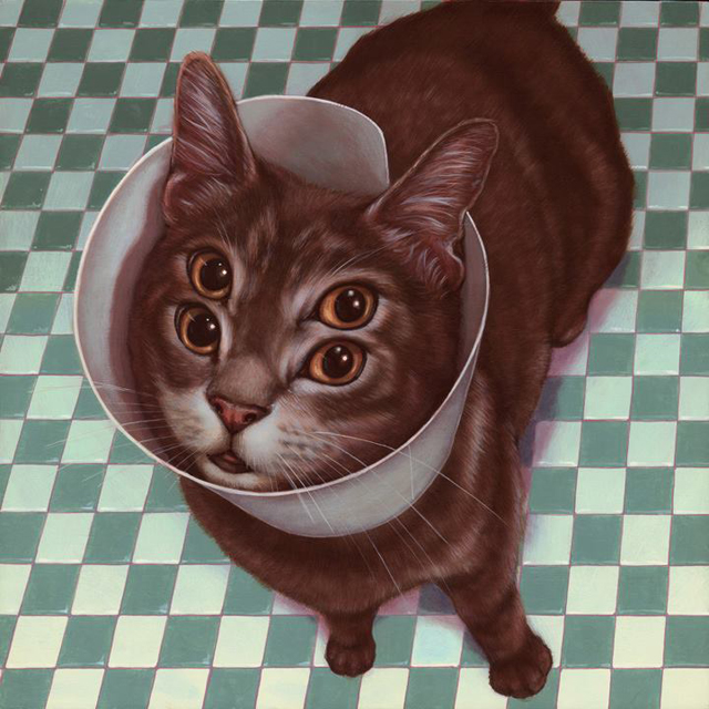 Bento by Casey Weldon