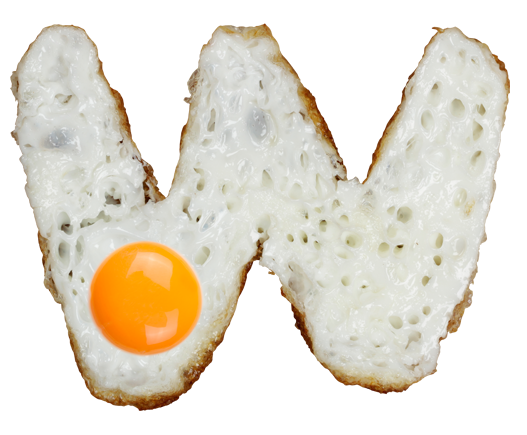 eggs font  a typeface made of carefully shaped fried eggs