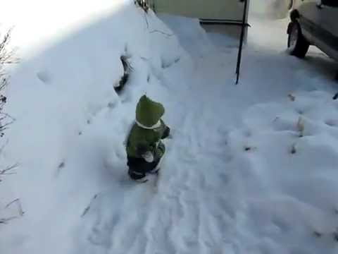 Monkey in a Tiny Green Coat Hops Around in the Snow