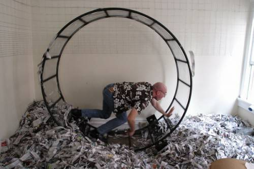 Human-Sized Hamster Wheel Offered For Free on Craigslist