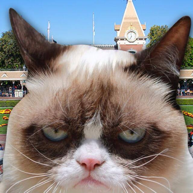 Grumpy Cat is Going to Disneyland For a 'Social Media All Stars' Event