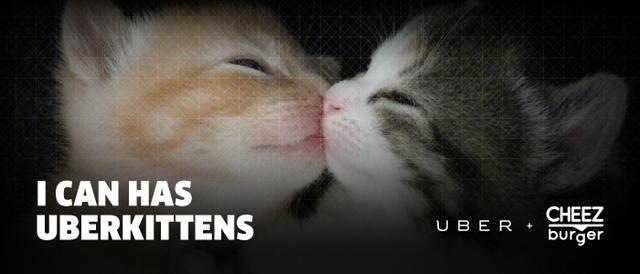 Uber Kittens