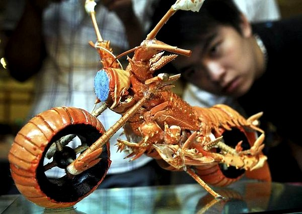 Lobster Motorcyle