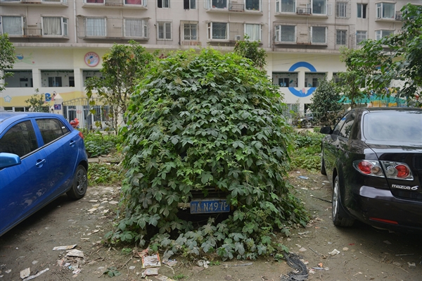 Chinese zombie car