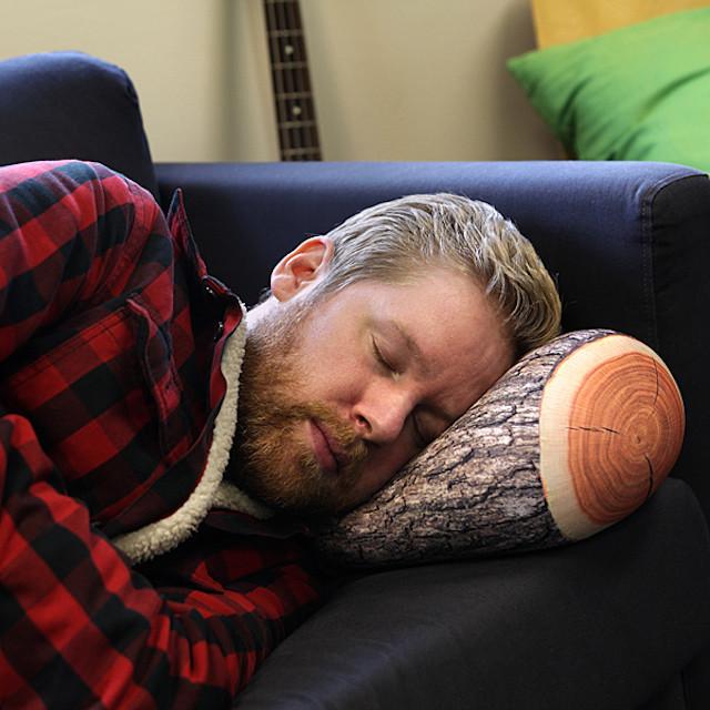 16ba_sleep_like_a_log_pillows_in_use