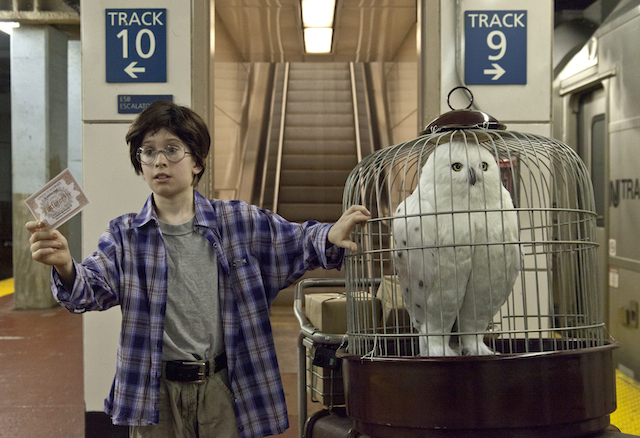 Harry Potter Recreated in Real Life in New York Penn Station by Improv Everywhere