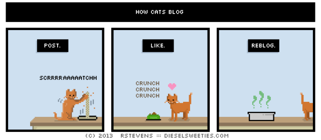 How Cats Blog