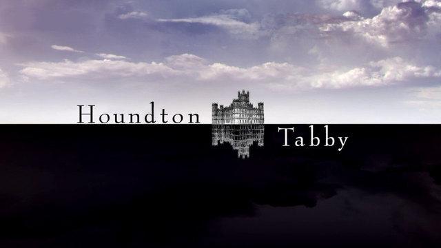 Houndton Tabby