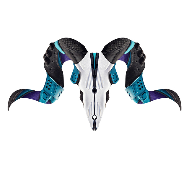 Sneaker Skulls