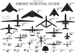 Drone Survival Guide