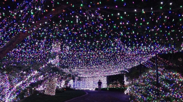 The World Record for the Most Lights on a House