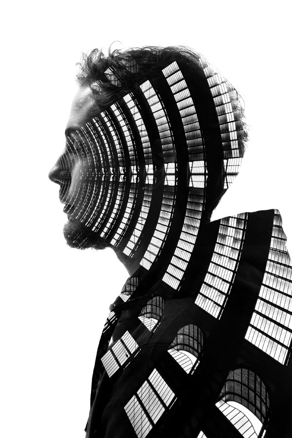 The Profiles of Milan by Francesco Paleari