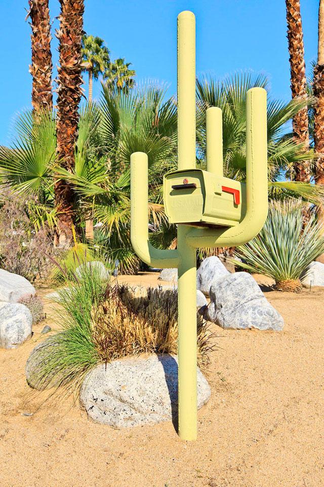 Cactus Mailbox