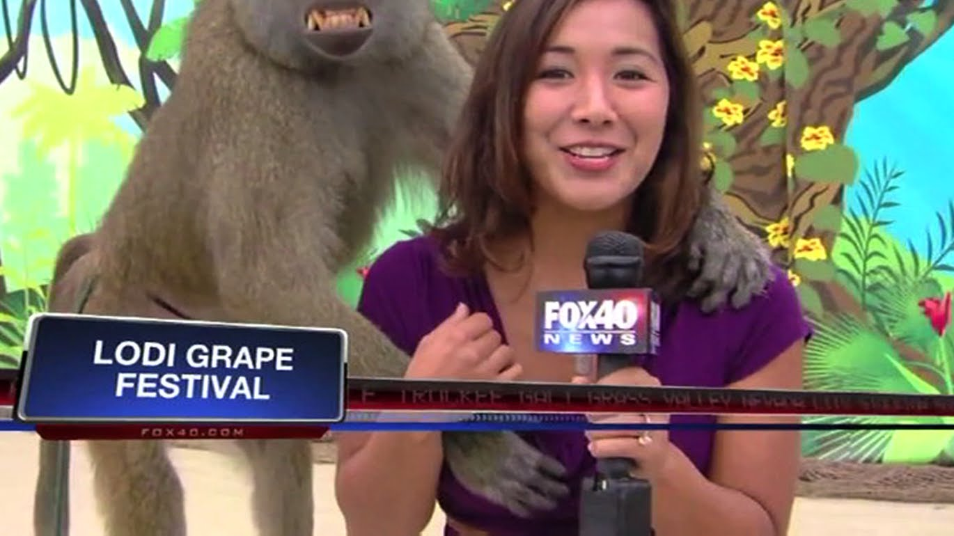 Compilation video of the best local news bloopers from 2013 Compilation c