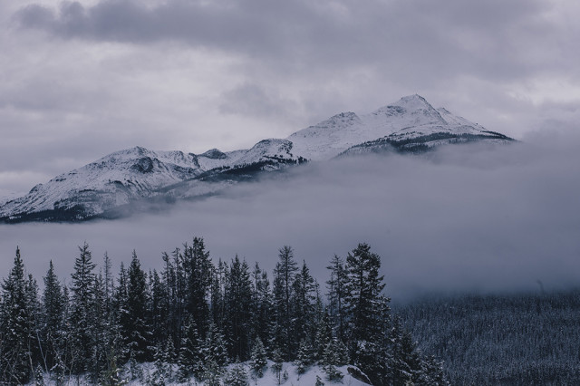 Fog in the Canadian Rockies